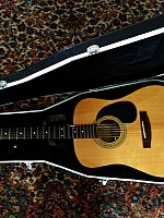 Zager EZ-Play ZAD20 Acoustic Natural